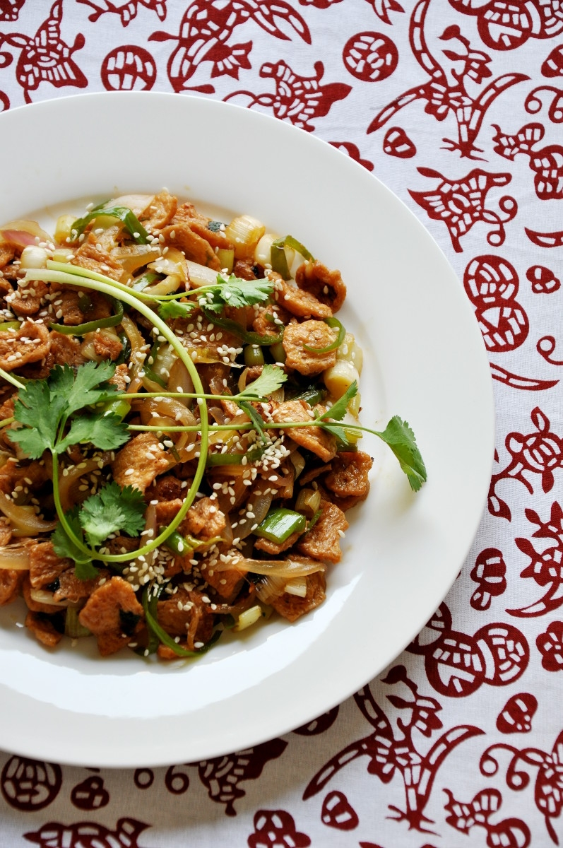 Soy Protein Stir-fry with Leek and Onion