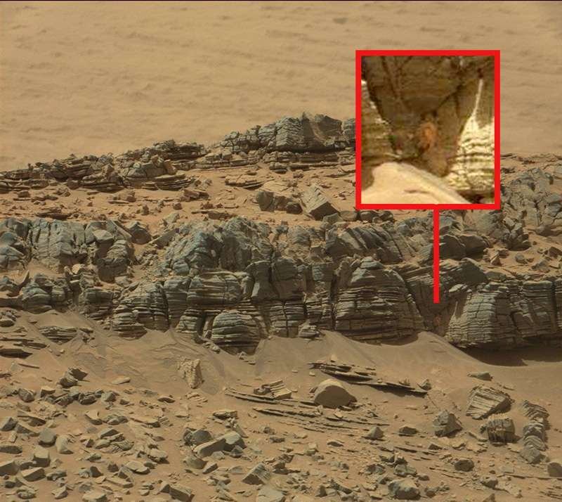 Proof of life on Mars??