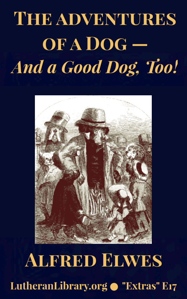 The Adventures Of A Dog, And A Good Dog Too! by Alfred Elwes