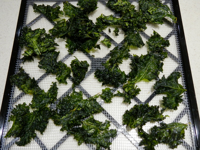 Dried Kale Chips