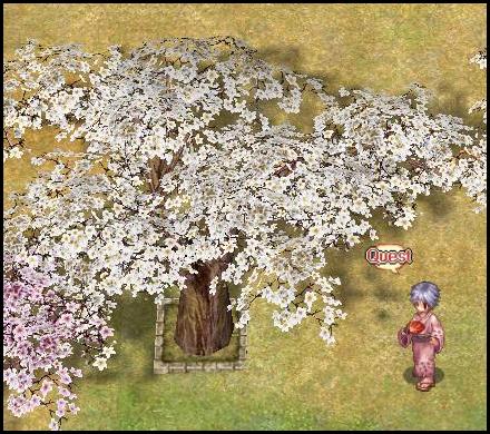 Momonta NPC screenshot