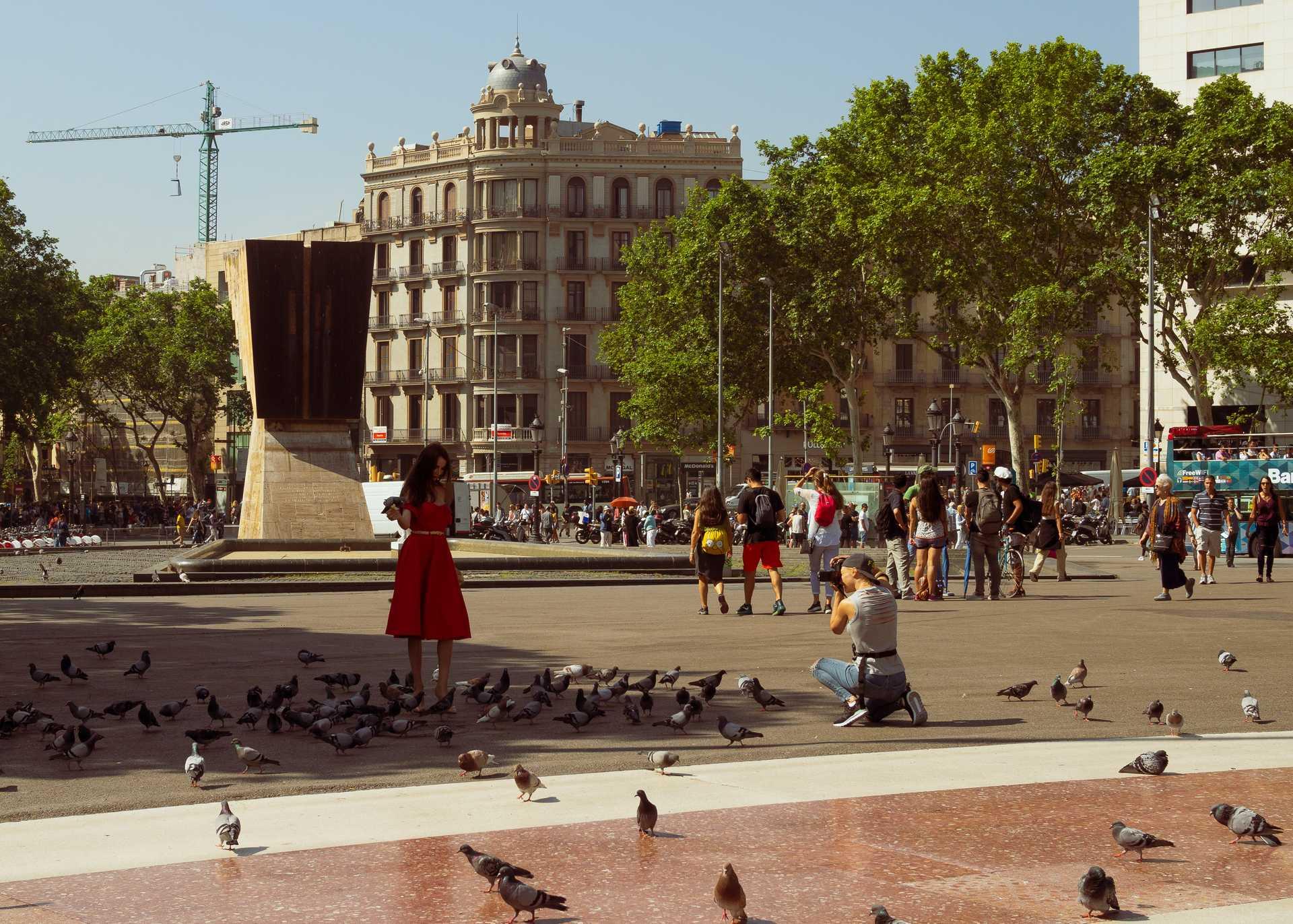Barcelona_Birds.jpg