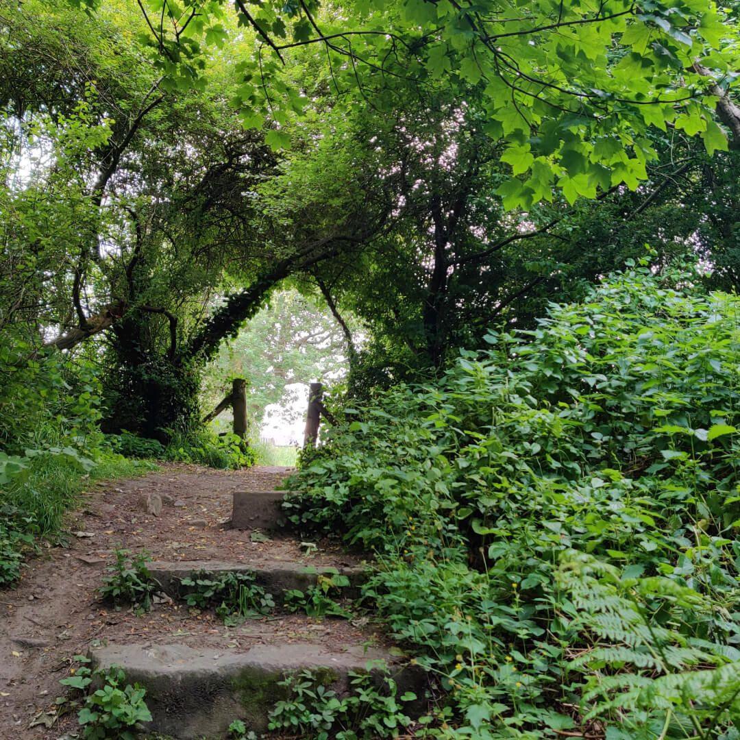 Hawksworth Wood steps to park