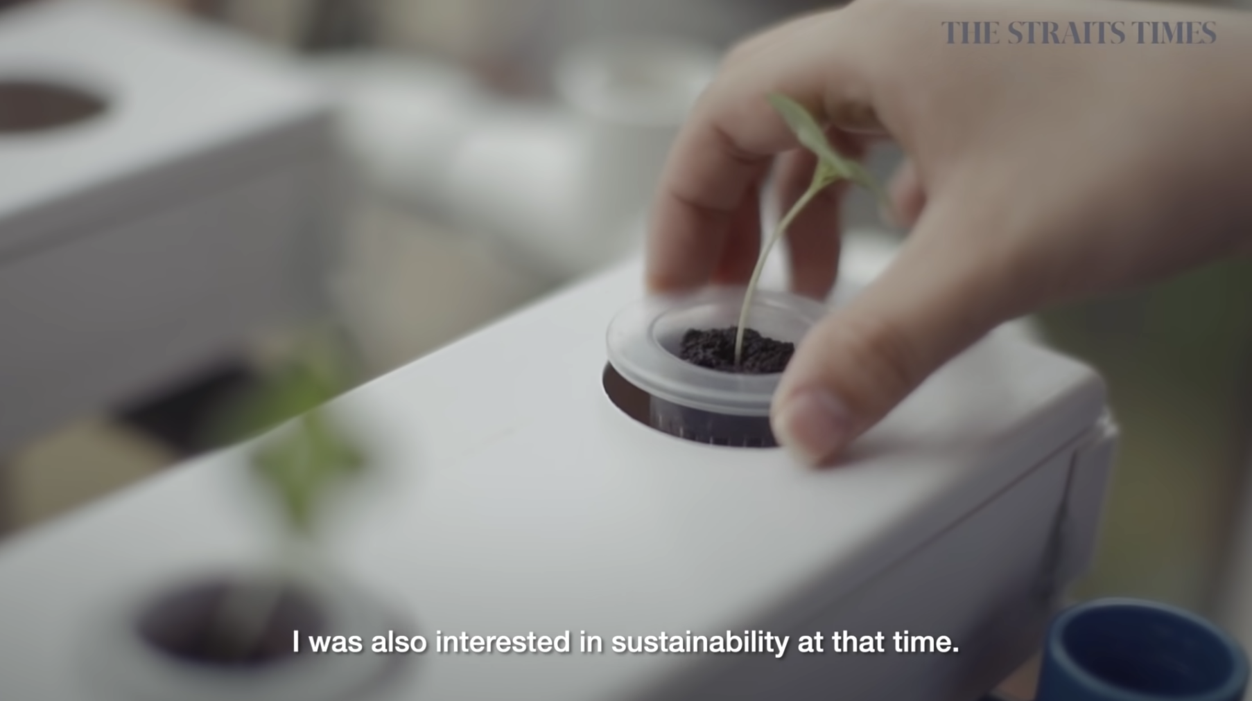YouTube screenshot hyperlinked to Teen grows sustainable hydroponics farm at home video