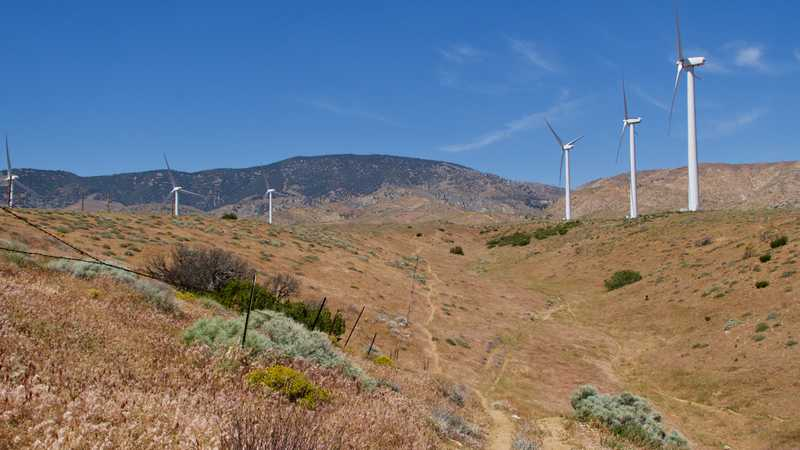 Windmills at top of ridge