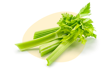Celery is listed as one of the 14 major food allergens