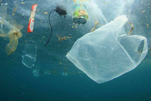Plastic Bags - Less than 1 percent of plastic bags goes into a recycle bin.