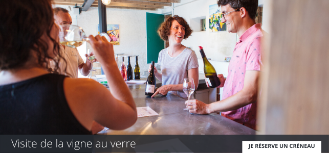 Visite de la vigne au verre au Domaine Gayrard