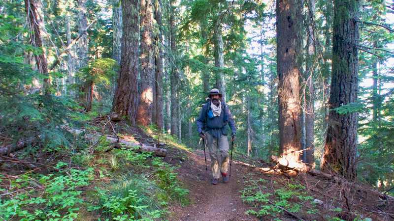 Dave walks on the PCT