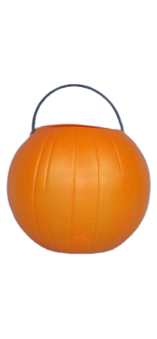 Pumpkin Pail photo
