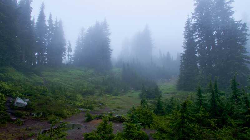 Fog near Ridge and Gravel lakes
