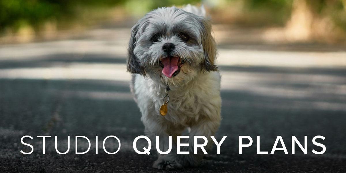 Studio Query Plans
