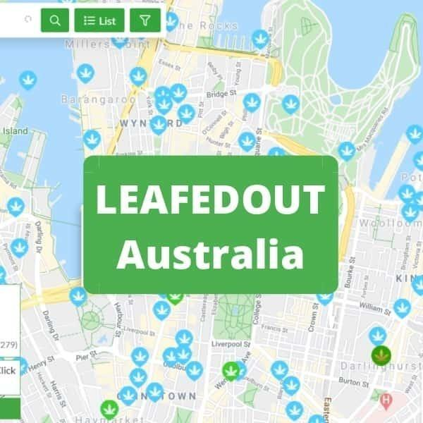 What is LeafedIn and LeafedOut? Is It Safe to Buy Weed?