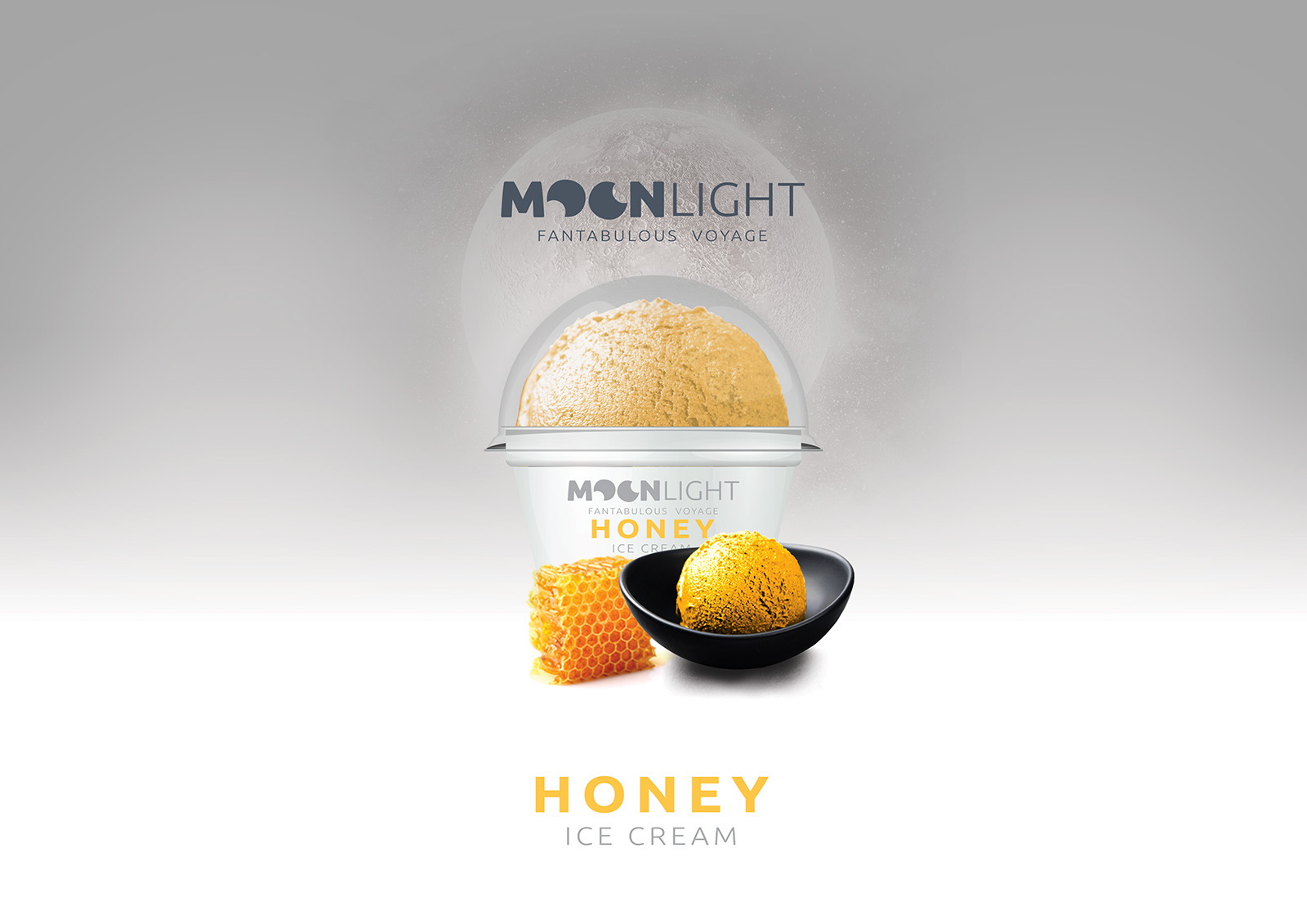 moonlight_concept3