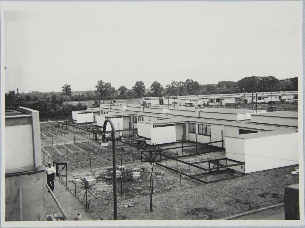 Dessau-Törten Gardens