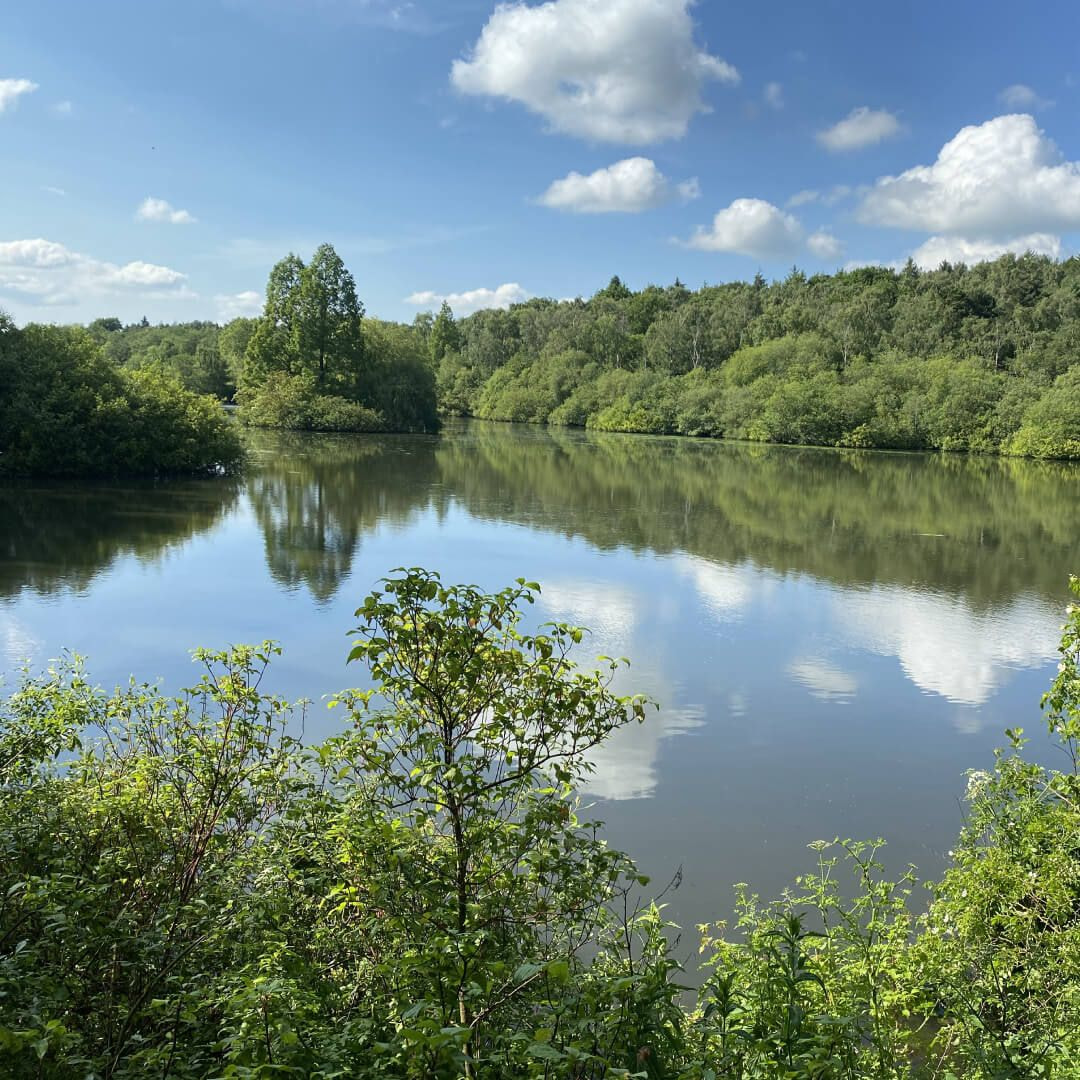 The large lake at Golden Acre Park