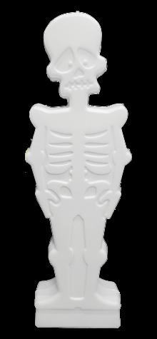 Light Up Skeleton photo