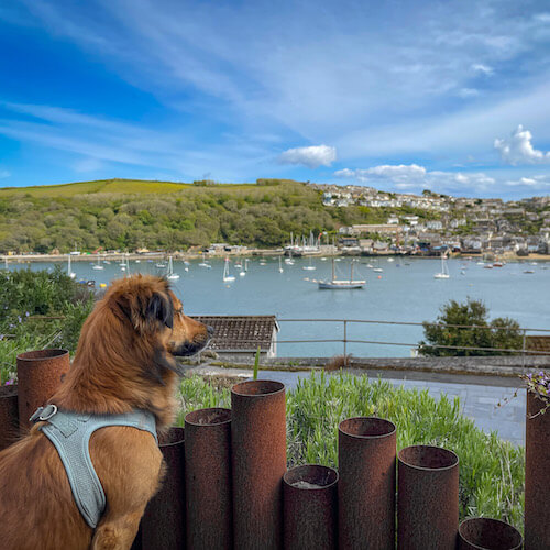 Bramley monitoring the situation in Fowey harbour.