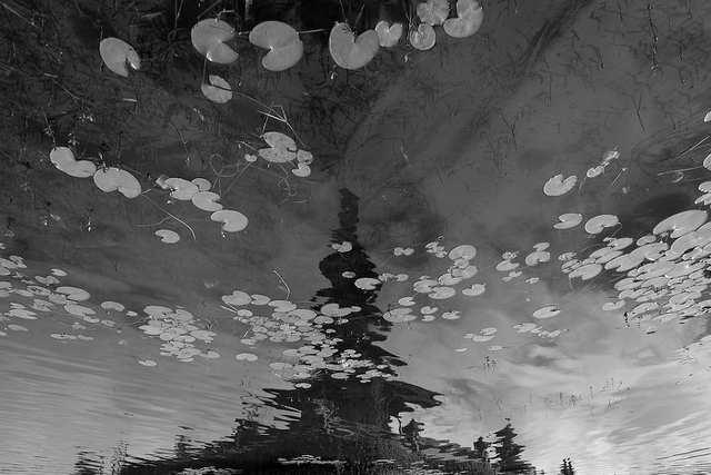 Fumes - Aqua Island - photo by ROKMA