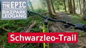 Schwarzleo Trail | Enduro MTB Trail im Bikepark Leogang/Saalfelden