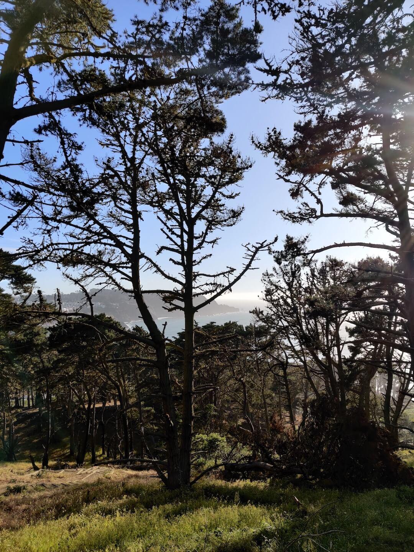 Picture of the Presidio in San Francisco