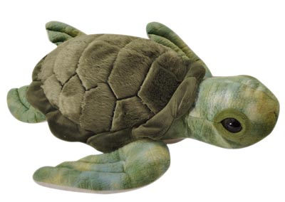 "The Petting Zoo: 10"" Conservation Turtle"