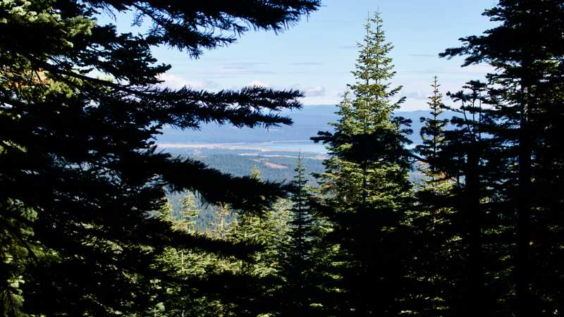 A view of Lake Almanor