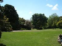 open spaces picnic