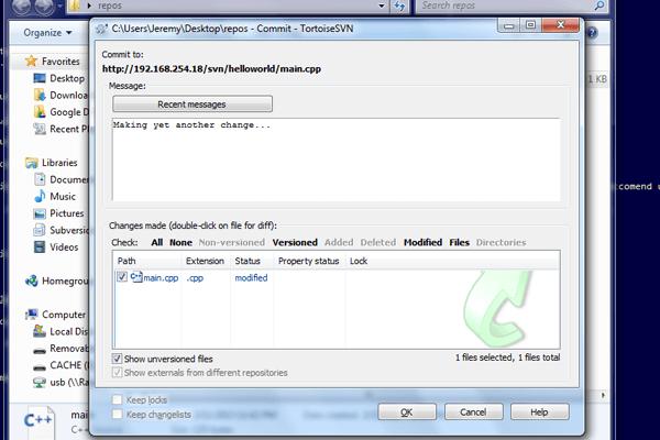 Raspberry Pi how to setup SVN server