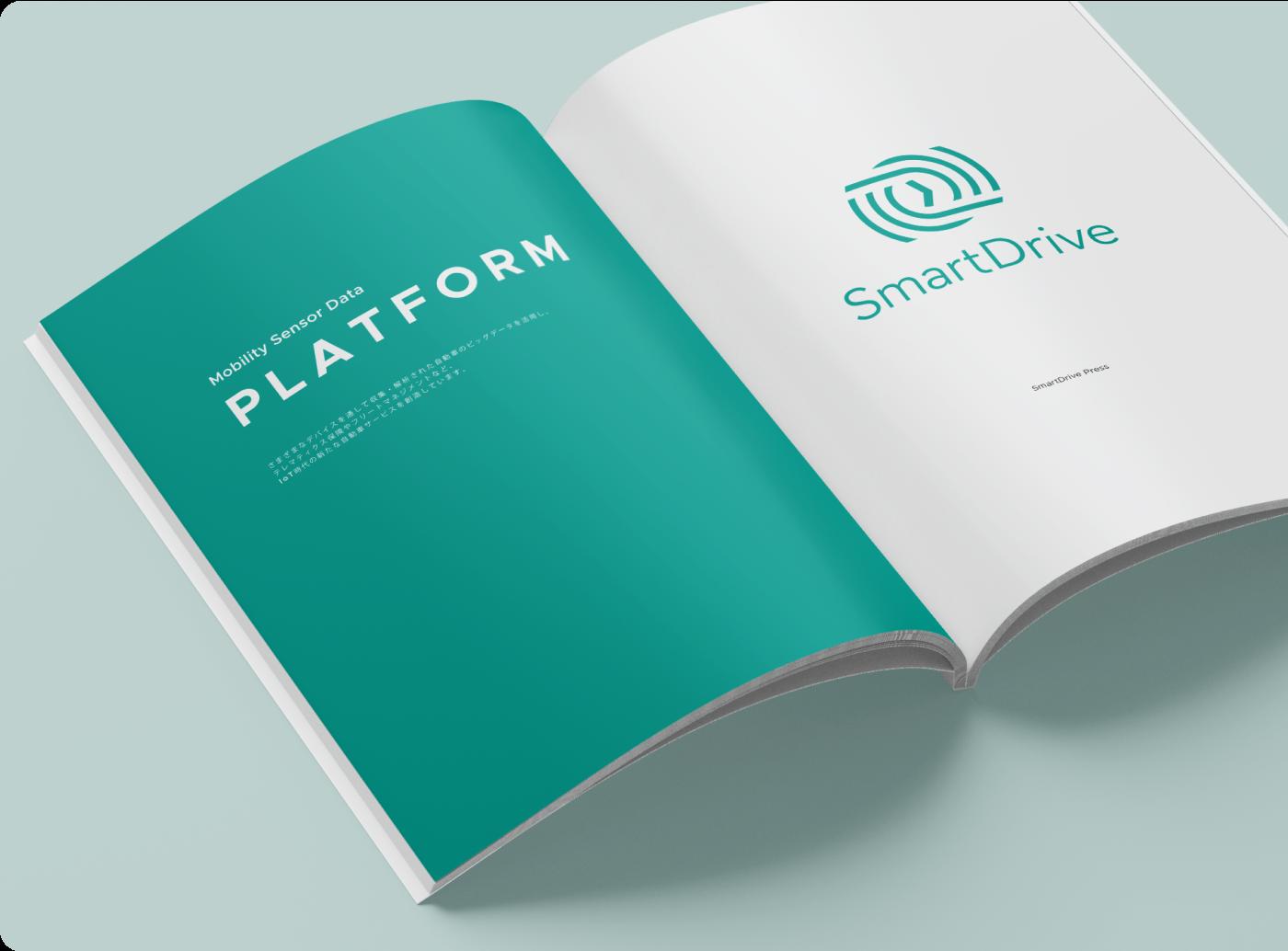 SmartDrive Cars
