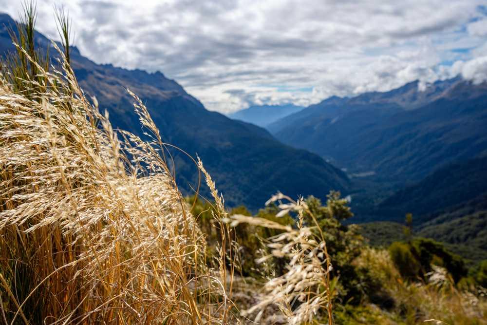 Key Summit, Fiordland National Park