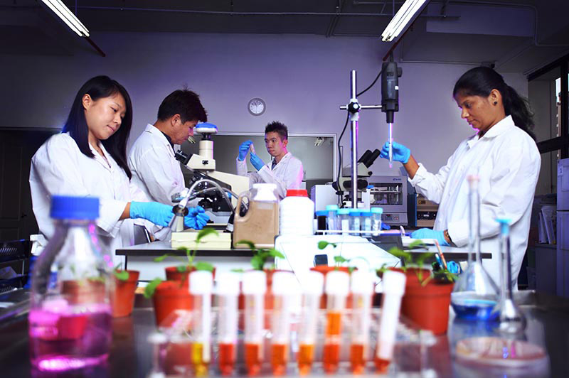 Biomax laboratory