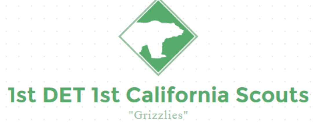 Logo of the 'First Detachment California Scouts' aka 'Grizzly Scouts,' a boogaloo boy militia.'