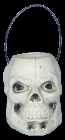 Skull Pail photo