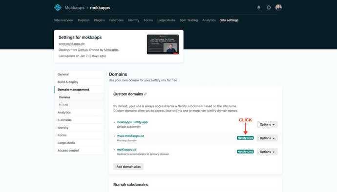 Netlify Domain Setting