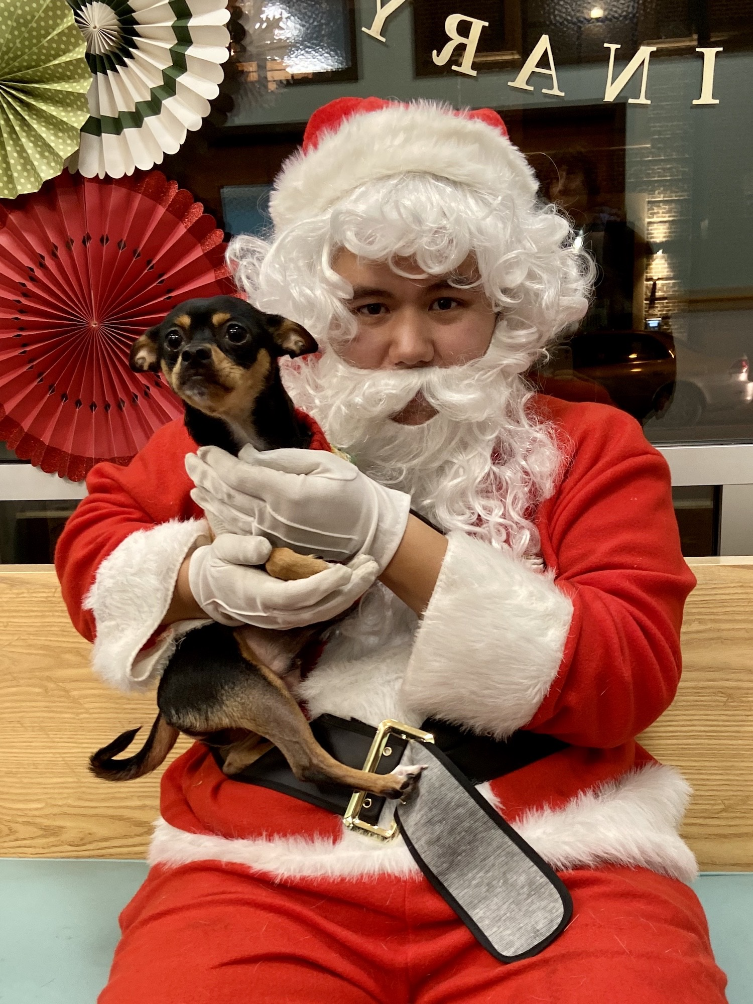 Basil with Santa.