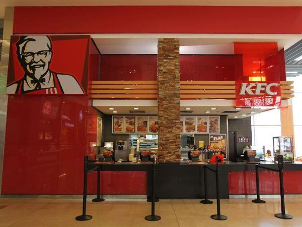 KFC, 내년부터 항생제 먹인 닭 안쓴다