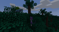 featured image thumbnail for post Modded server