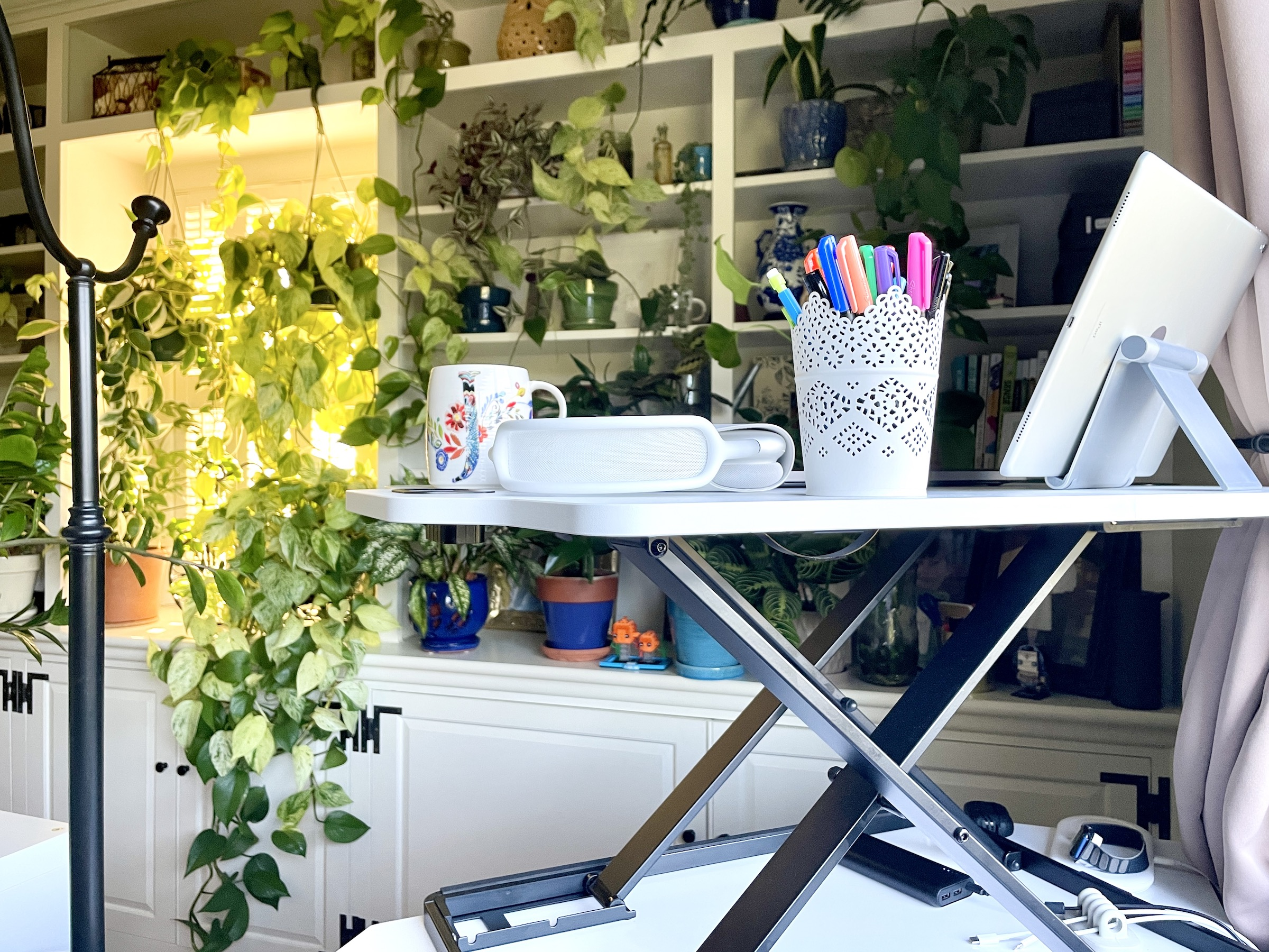 A home office featuring lots of plants