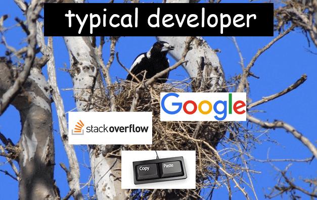 Image of typical developer