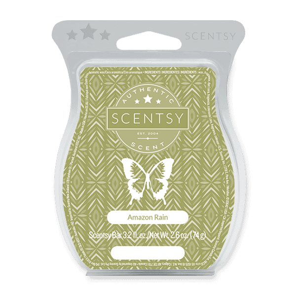 Picture of Amazon Rain Scentsy Bar