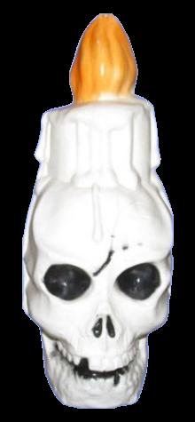 Skull Candle photo
