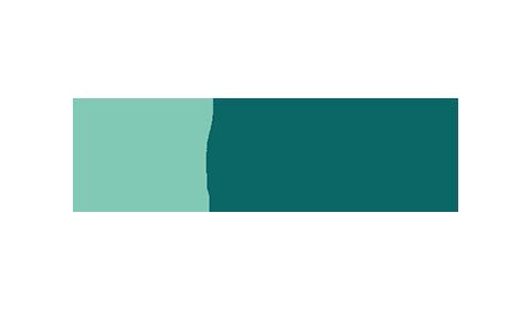 Company alloy