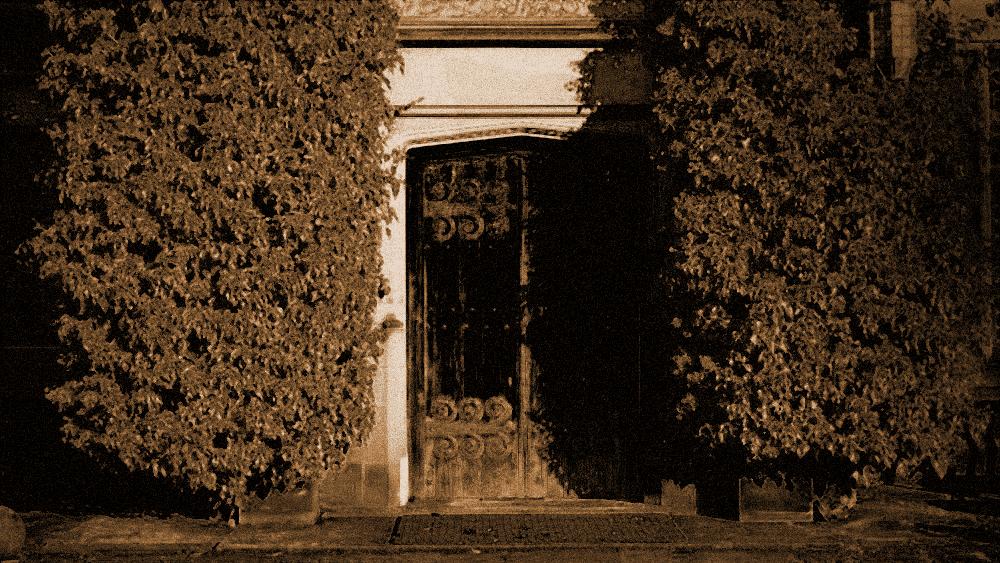 Hintertür eines alten, bewachsenen Hauses