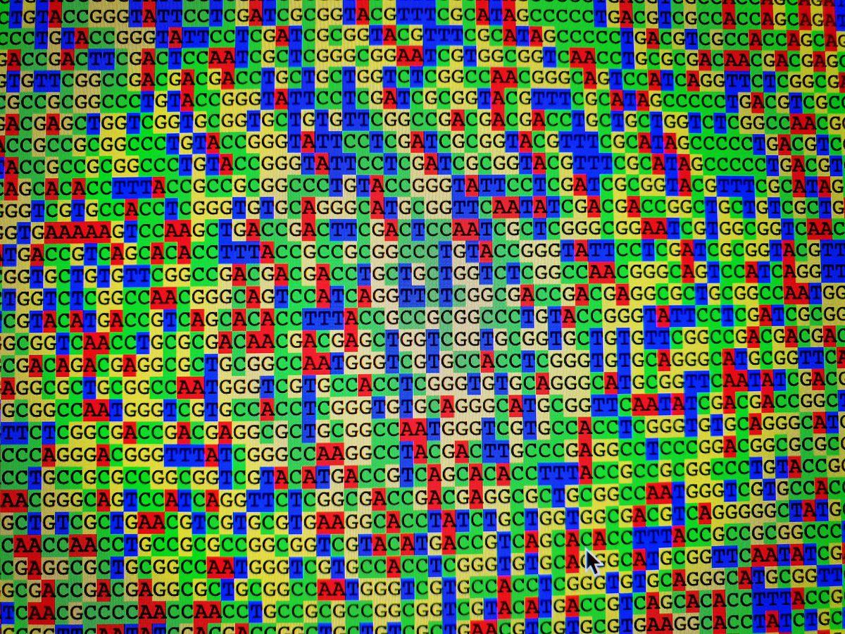 Bioinformatics คืออะไร ?