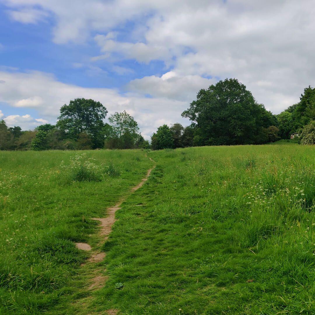Meanwood Park Back Field