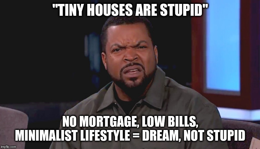 A meme of Ice Cube (confused face) with 'tiny houses are stupid' text at the top and 'no mortgage, low bills, minimalist lifestyle = dream, not stupid' text at the bottom.