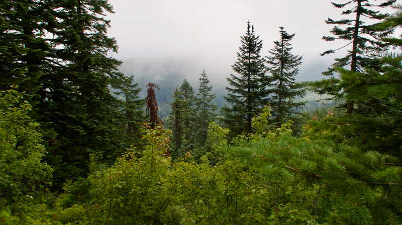 A cloudy view from Big Huckleberry Mountain