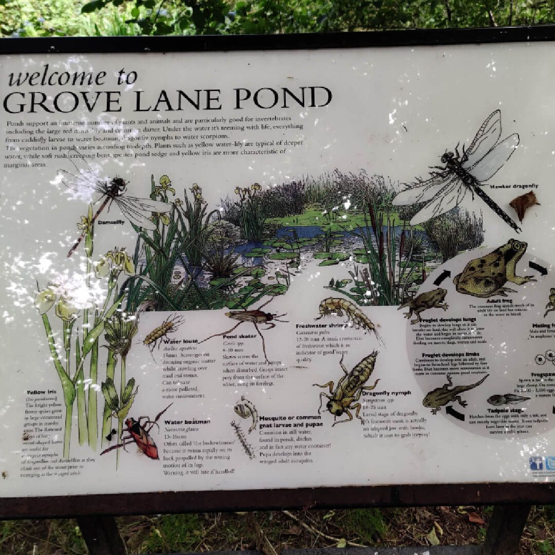 Grove Lane Pond Sign