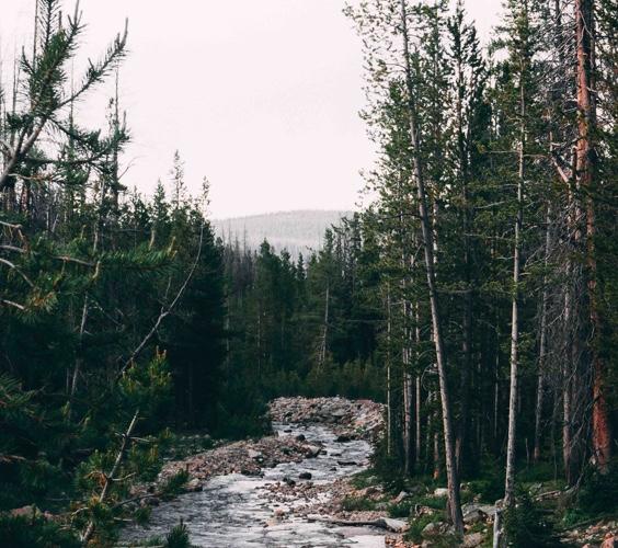 River In Colorado